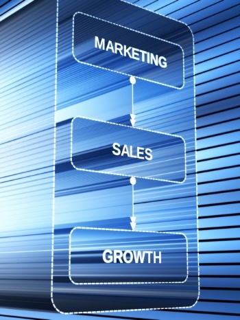 Consulting services in Marketing & Sales leads to growth